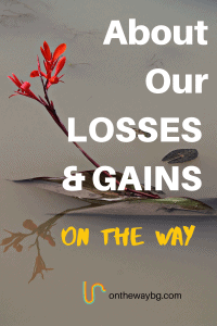 About our Losses & Gains