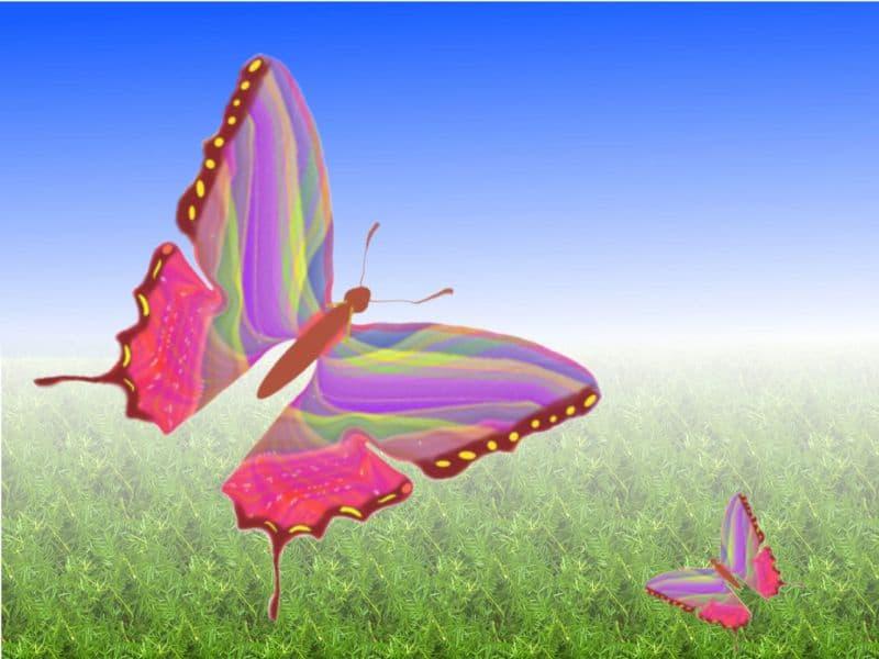 радостта от преобразяването