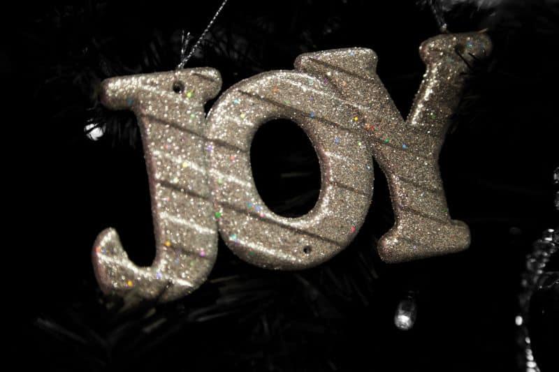 радост и задоволство