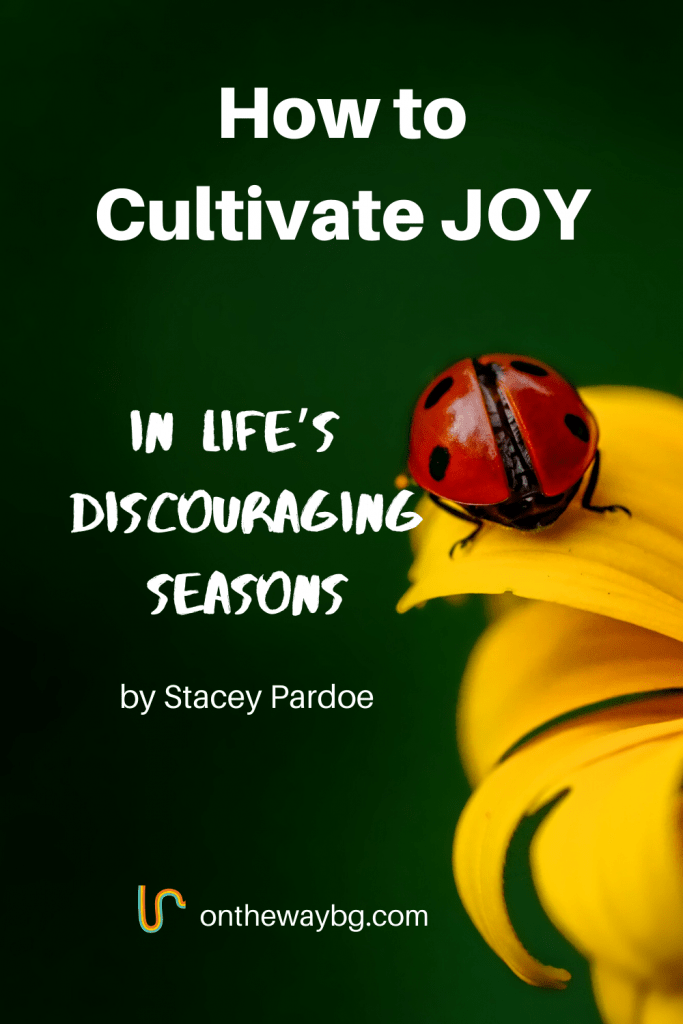 How to cultivate joy