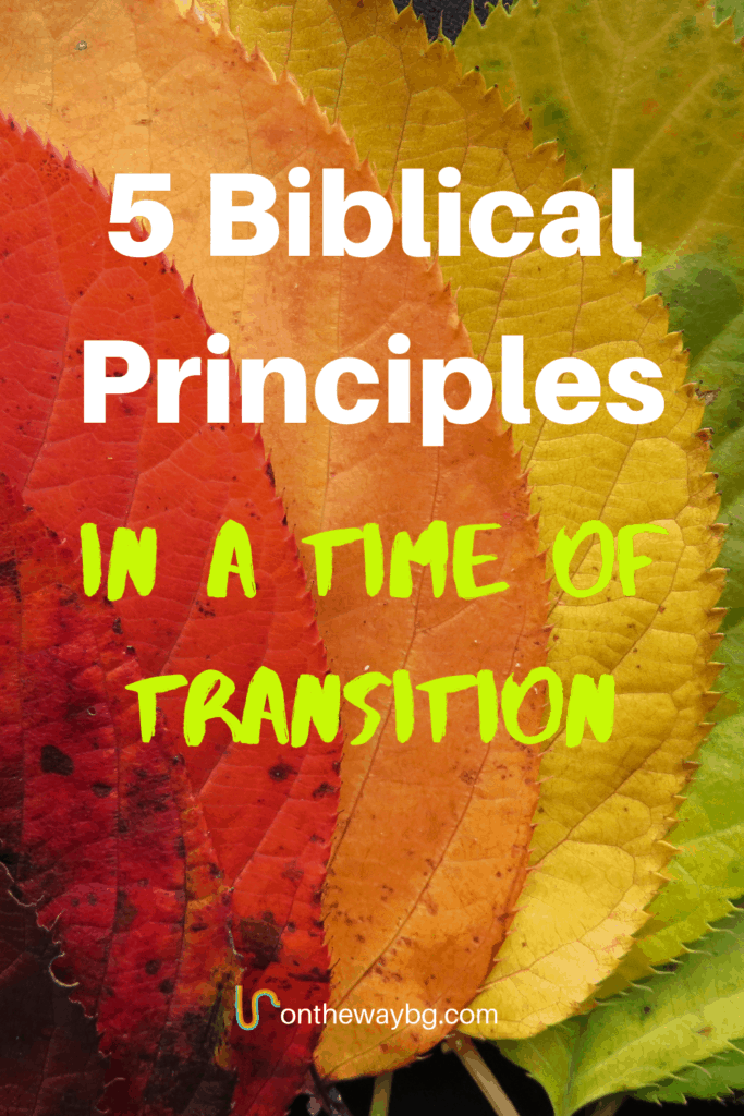 5 Biblical Prinicples in a Time of Transition